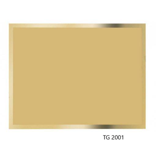TG2001
