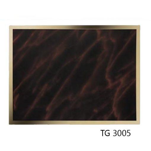 TG3005